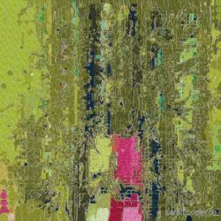 Allium Series, carolcooper.ca